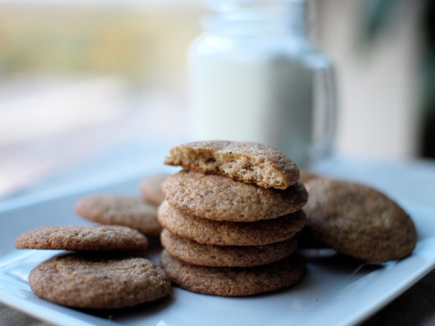 Apple Cider Snickerdoodles bite